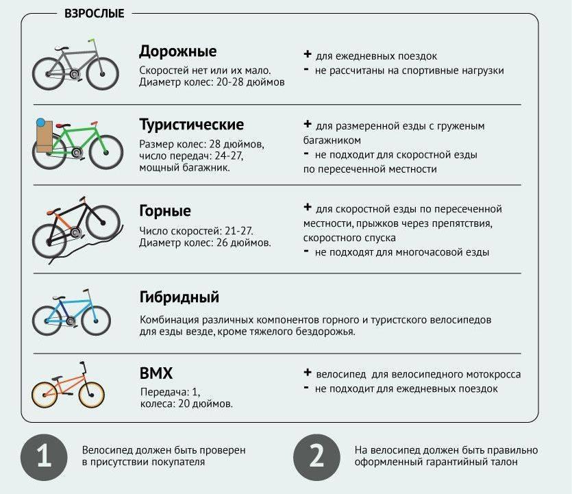 Детский скоростной велосипед: нужны ли детям велосипеды с переключением скоростей? как его выбрать?