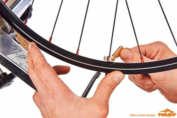 Сборка велосипедного колеса. часть 2 | веложурнал