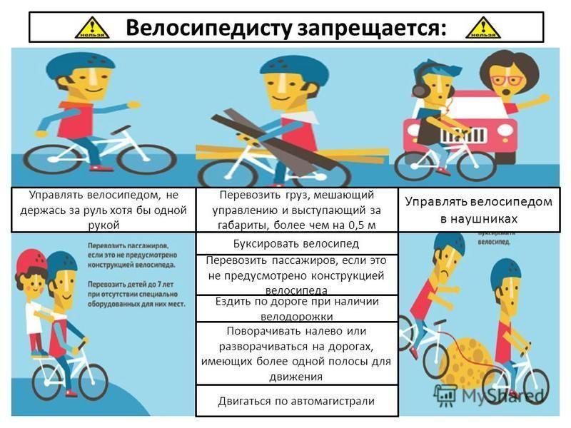 Прокат велосипедов как бизнес: сезонное дело приносящее прибыль