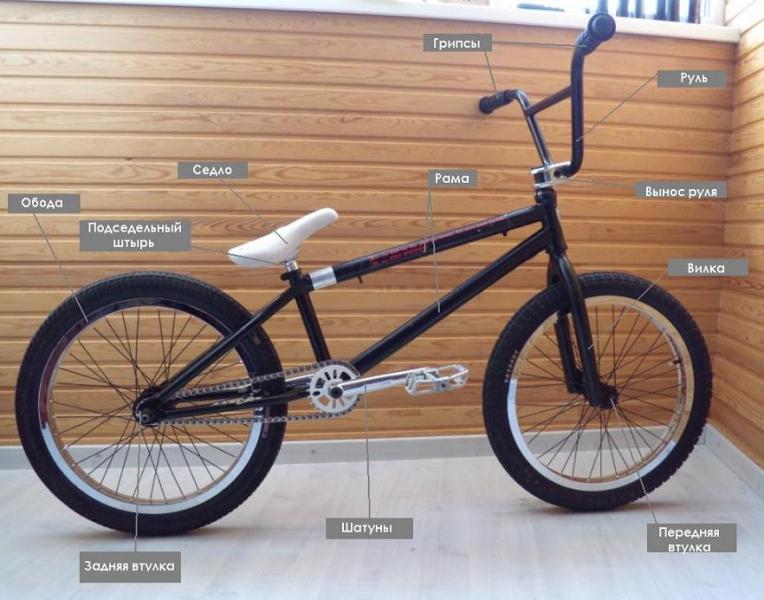 Особенности велосипеда bmx