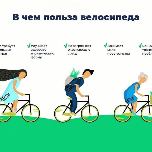 Польза езды на велосипеде: чем полезна езда, это, для, мужчин, женщин, фигуры, вред