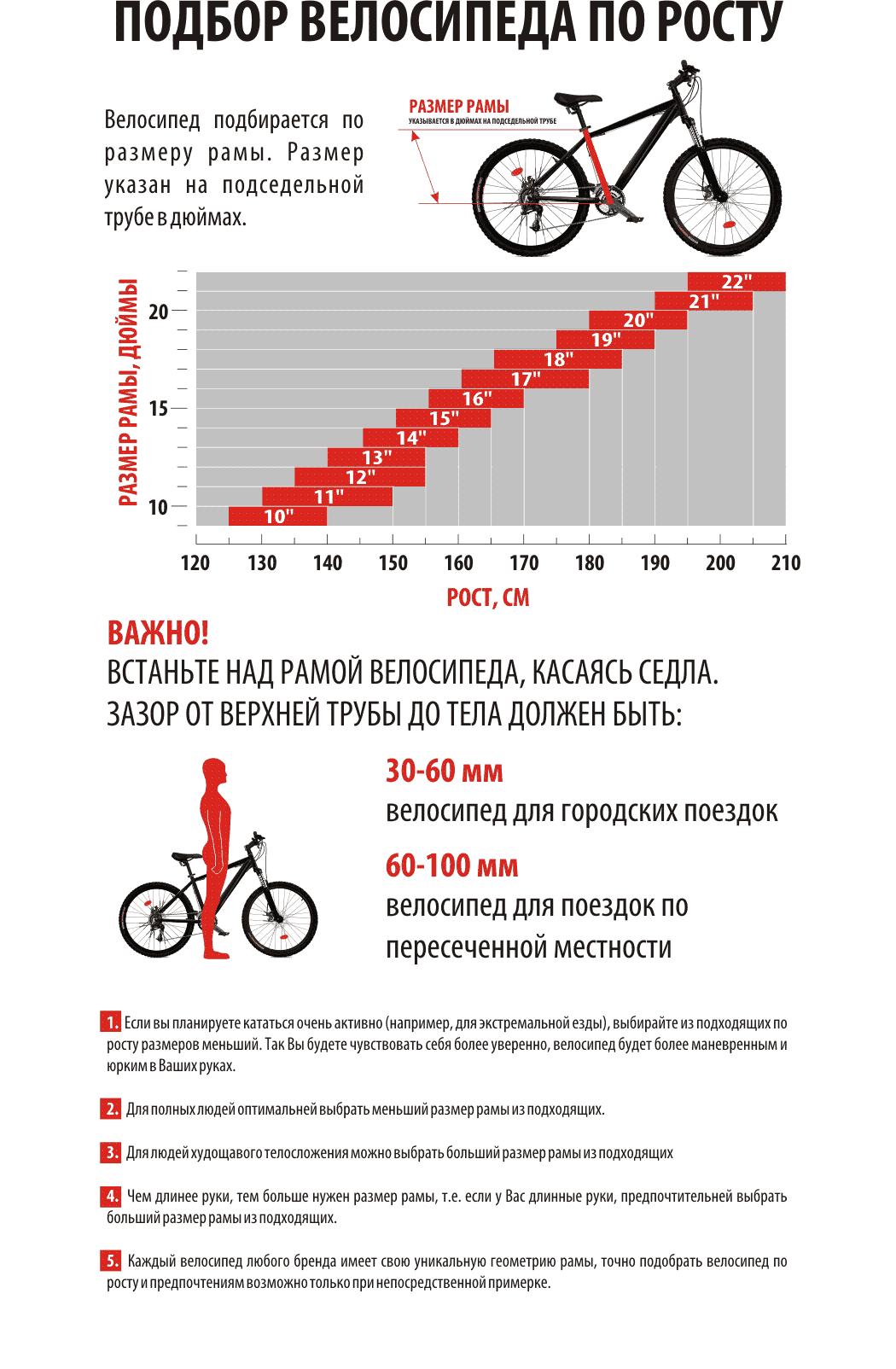 Какой лучше выбрать велосипед?