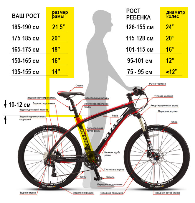 Как правильно выбрать размер велосипеда для взрослого или ребенка?