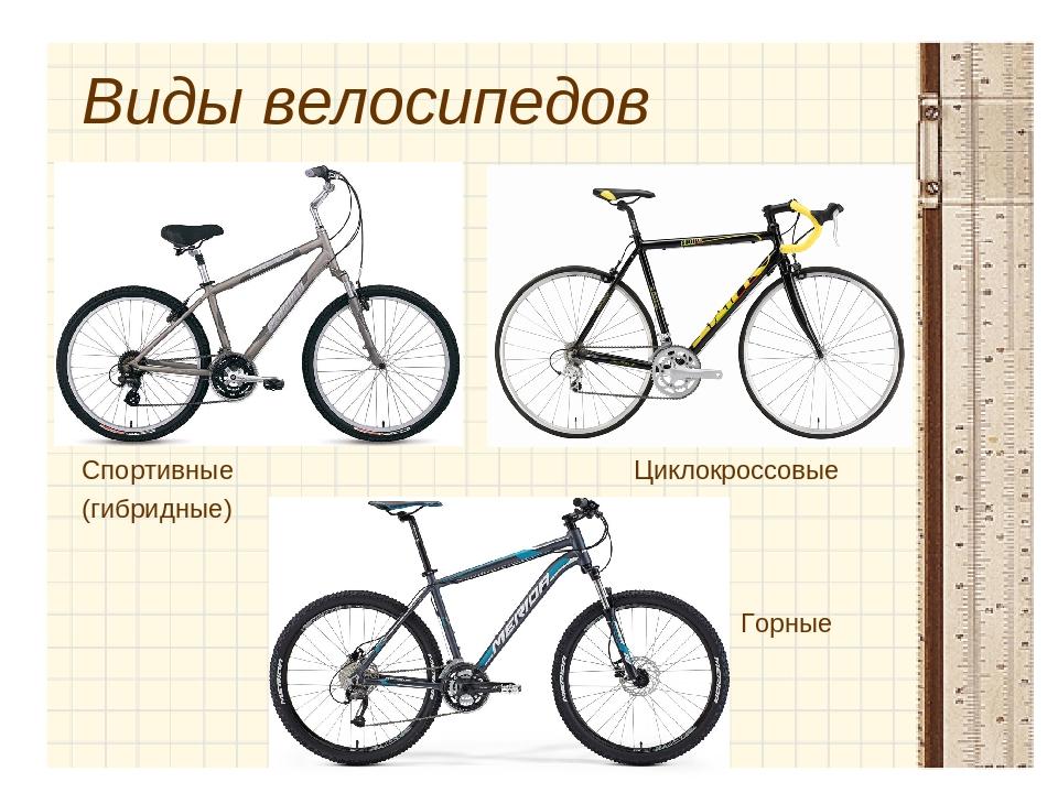 Виды велосипедов и их назначение. какие бывают велосипеды