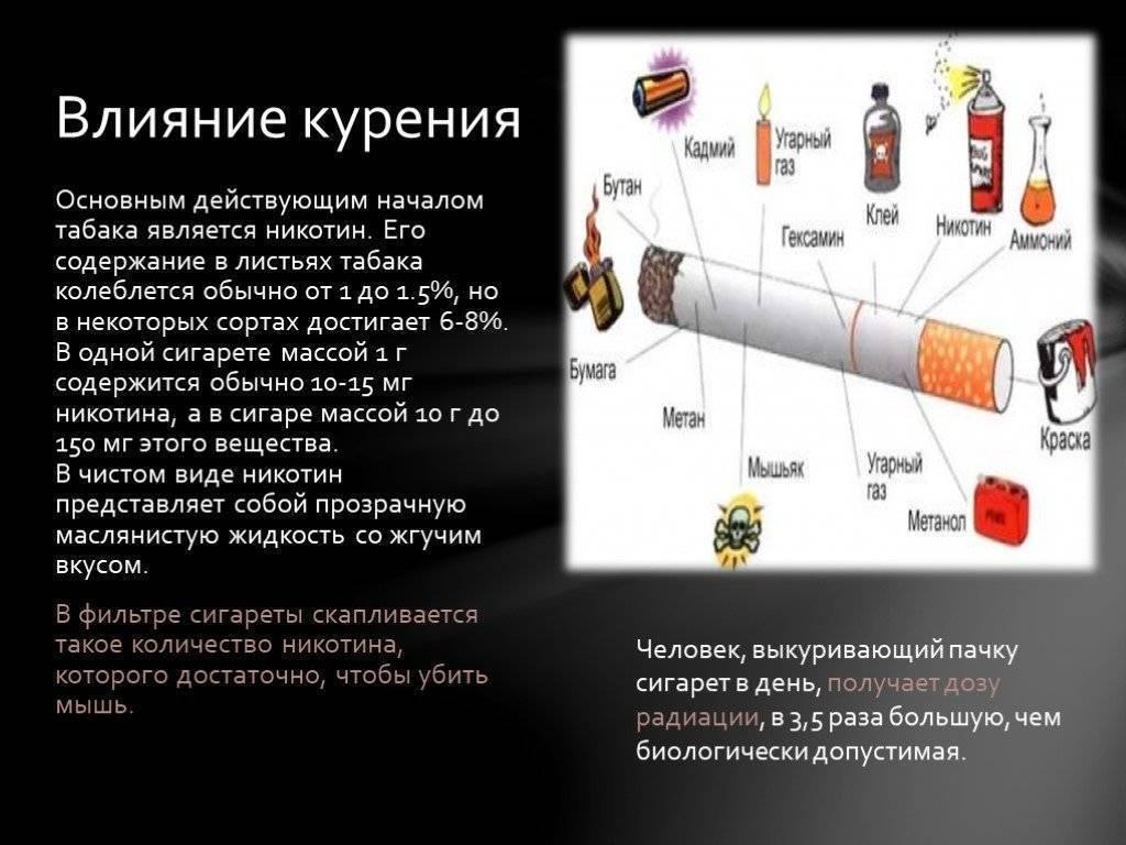 Воздействие никотина на мозг и его функции: к каким последствиям может привести курение
