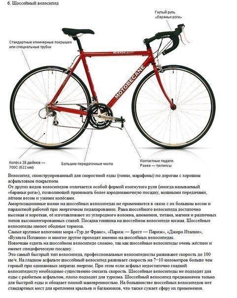 Типы и виды велосипедов: полный список категорий с фото
