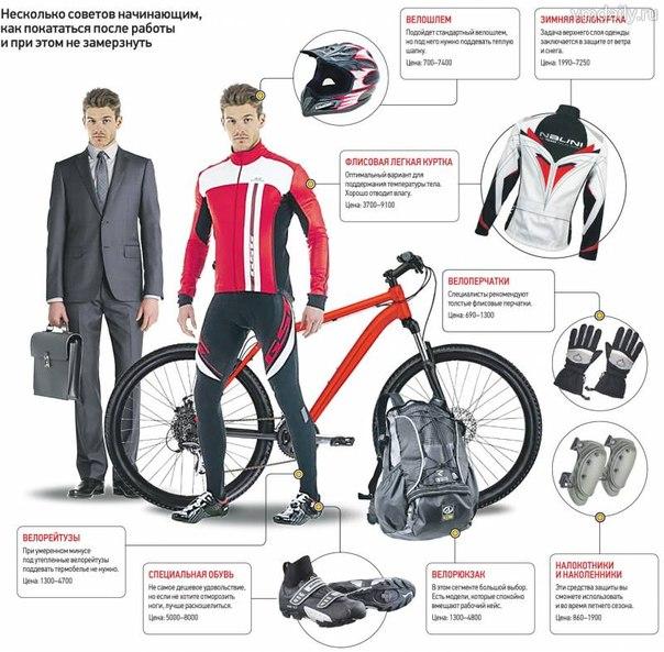 Выбираем велошорты