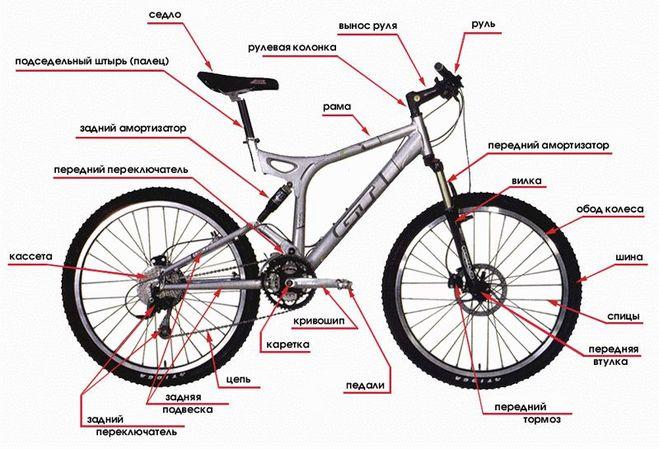 Велосипедный звонок: обзор видов