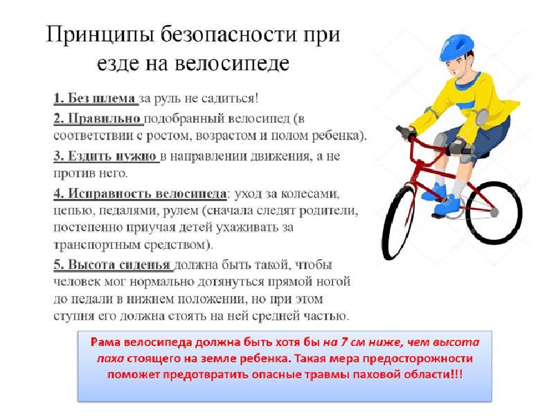Могут ли полицейские задержать велосипедиста, у которого нет с собой документов