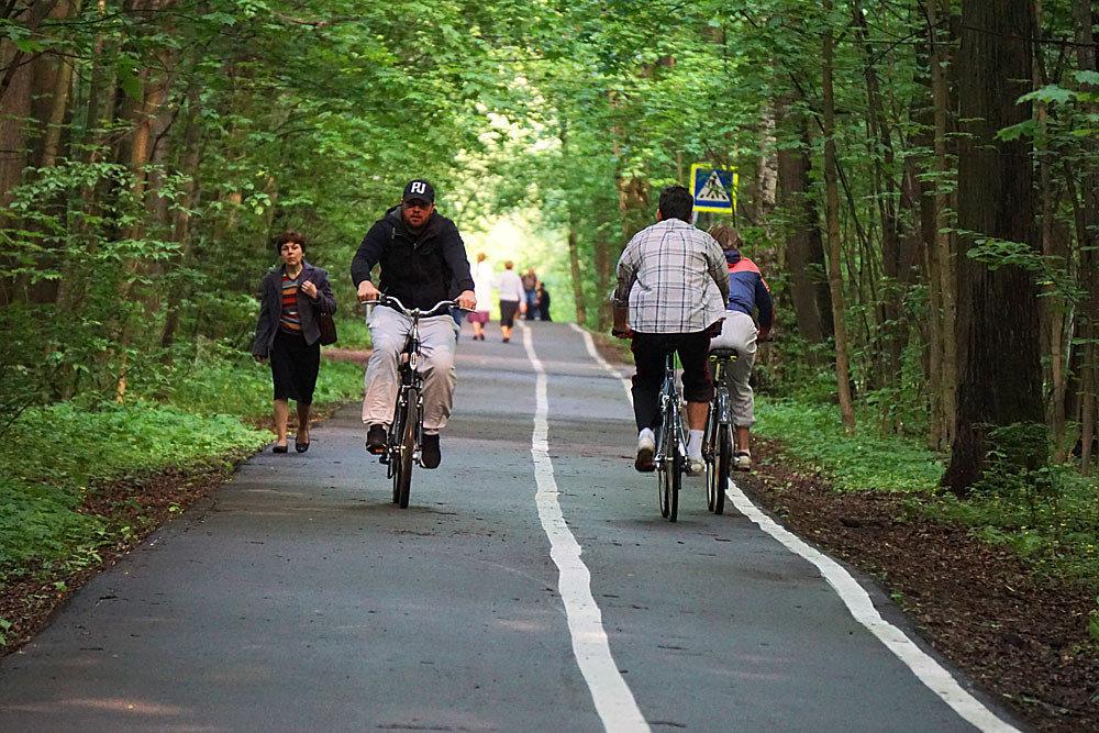 Как проложить велосипедный маршрут?