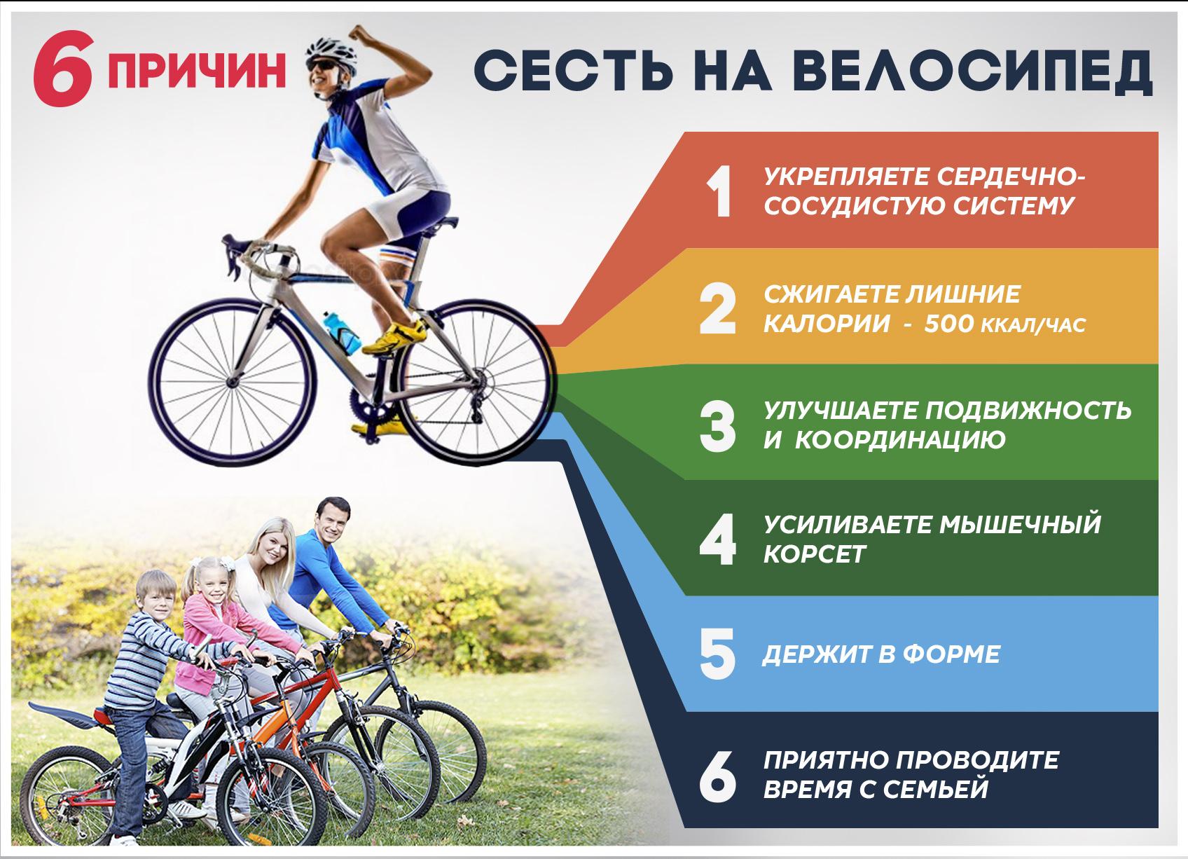 1 час езды на велосипеде сколько калорий. сколько калорий тратит велосипедист во время езды. теперь я не беспокоюсь о лишнем весе