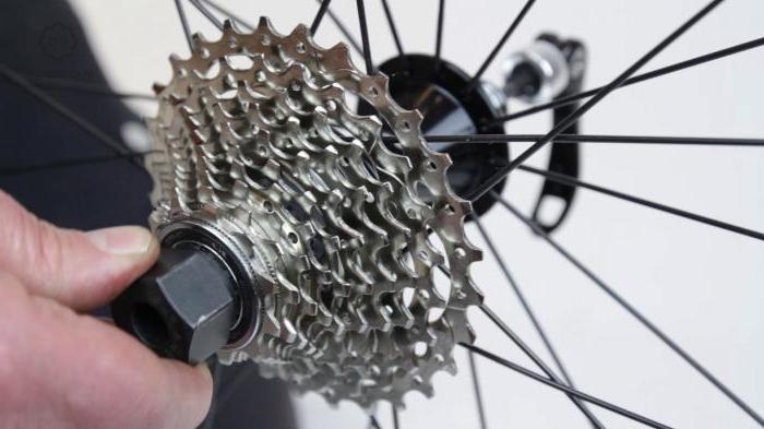 Скрипят тормоза велосипеда – как избавиться от проблемы?