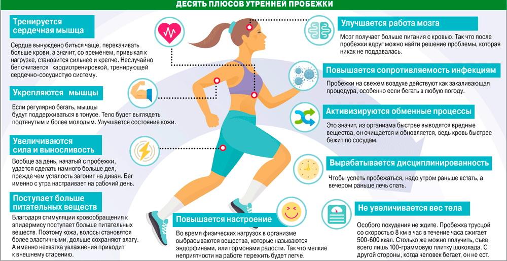 Польза велотренажера для женщин — 6 фактов, возможный вред и противопоказания, какую программу тренировок для похудения лучше выбрать?