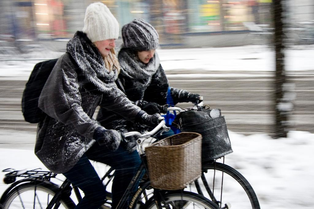 Сколько стоит хороший велосипед для начинающих