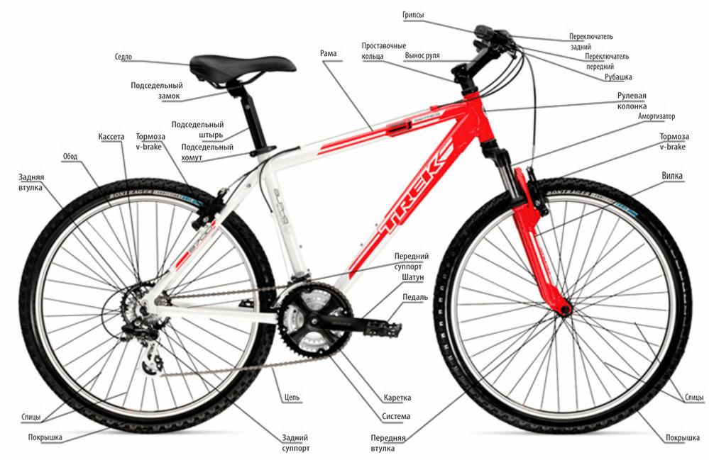 Велосипедный звонок: обзор разновидностей. и нужен ли он вообще?