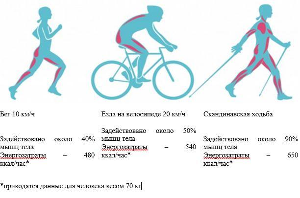 Давление в шинах велосипеда, какое должно быть и чем качать? - bike-rampage