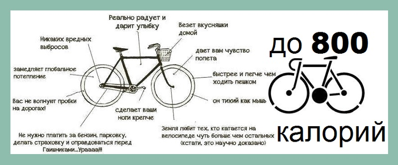 Сколько калорий тратит велосипедист во время езды   советы   veloprofy.com