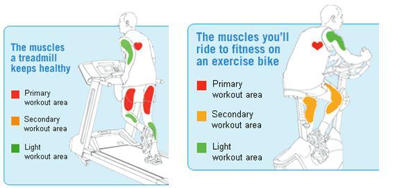 Как велосипед меняет массу тела и объем ног