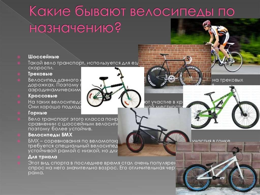 Есть ли смысл покупать дорогой велосипед