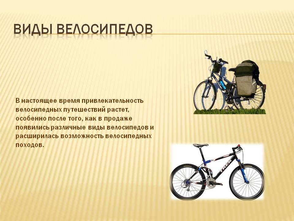 Велосипедные прицепы: предназначение и виды