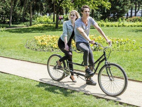 Какие бывают велосипеды: типы, виды, назначения