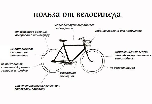 Скорость велосипеда: с какой скоростью может ехать велосипед?