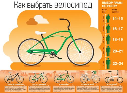 Почему так трудно худеть, даже если много катаешь на велосипеде   сайт котовского