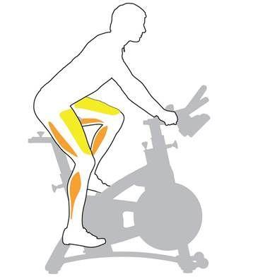 «велосипед»: как правильно делать упражнение, польза и противопоказания