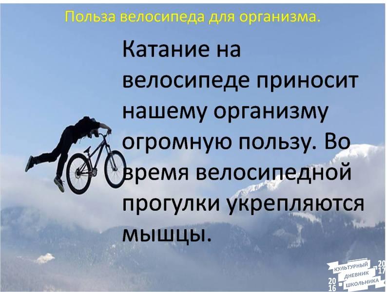 Польза езды на велосипеде: 20 причин заняться велоспортом