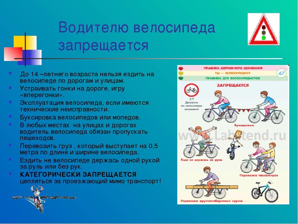 Правила езды на велосипеде для школьников и взрослых