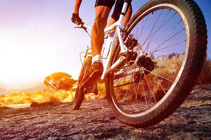 Подробное сравнение – что лучше беговая дорожка или велотренажер?