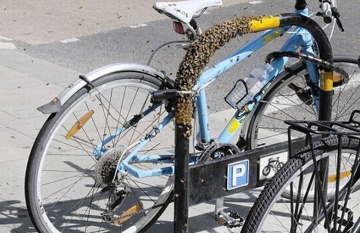 Как правильно пристегивать велосипед замком