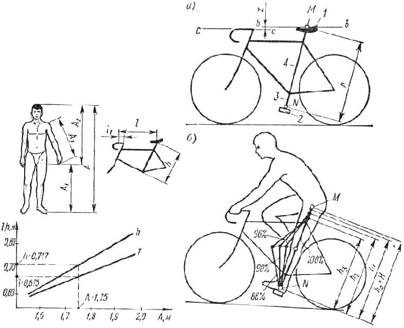 Правильная посадка на велосипеде: 3 главных типа