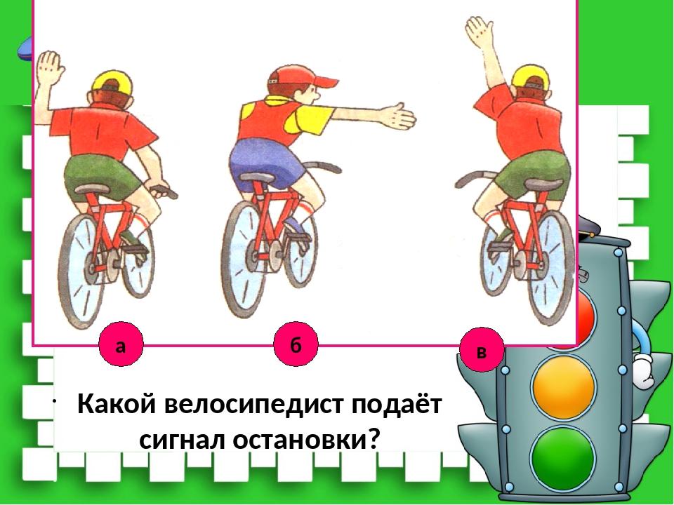 Двухколёсный галоп: какую скорость можно развить на велосипеде? » спортивный мурманск