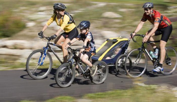 Велосипед польза и вред для мужчин