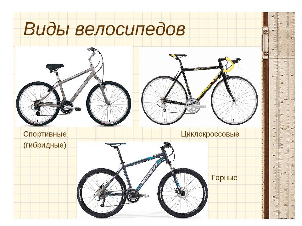 Размер велосипеда. как выбрать правильно | сайт котовского