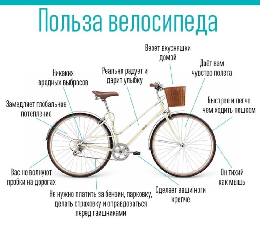 Что дает езда на велосипеде для фигуры, как она влияет на мышцы