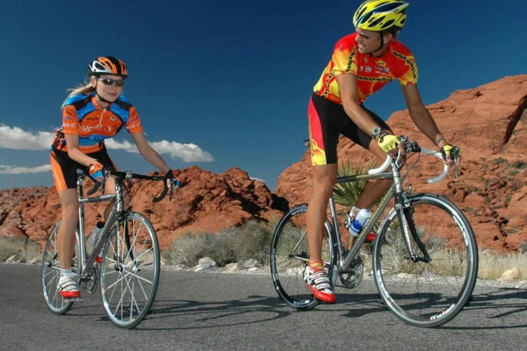Спортивные велосипеды — виды и особенности