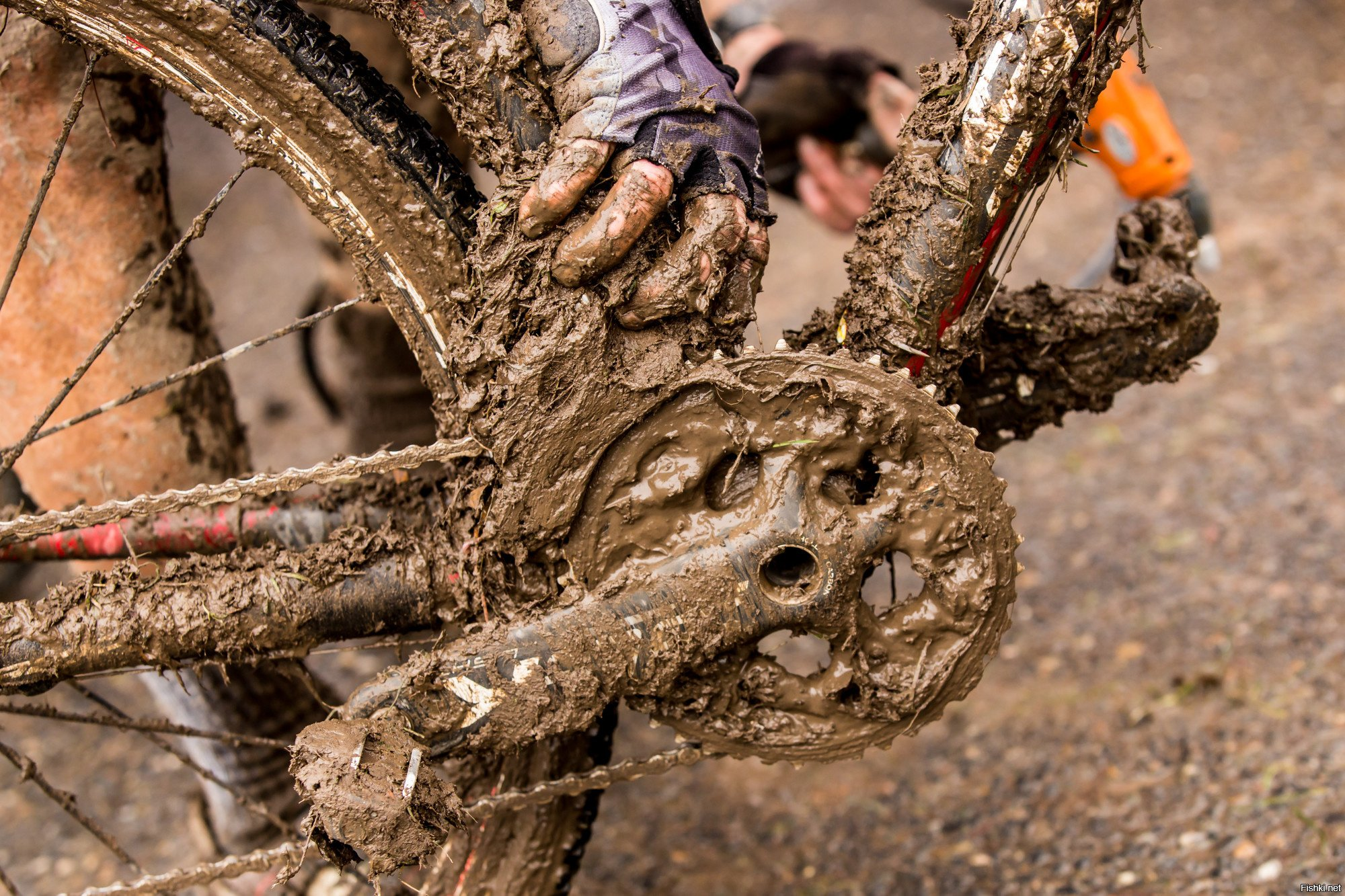 Классификация-типизация современных велосипедов | велосипед