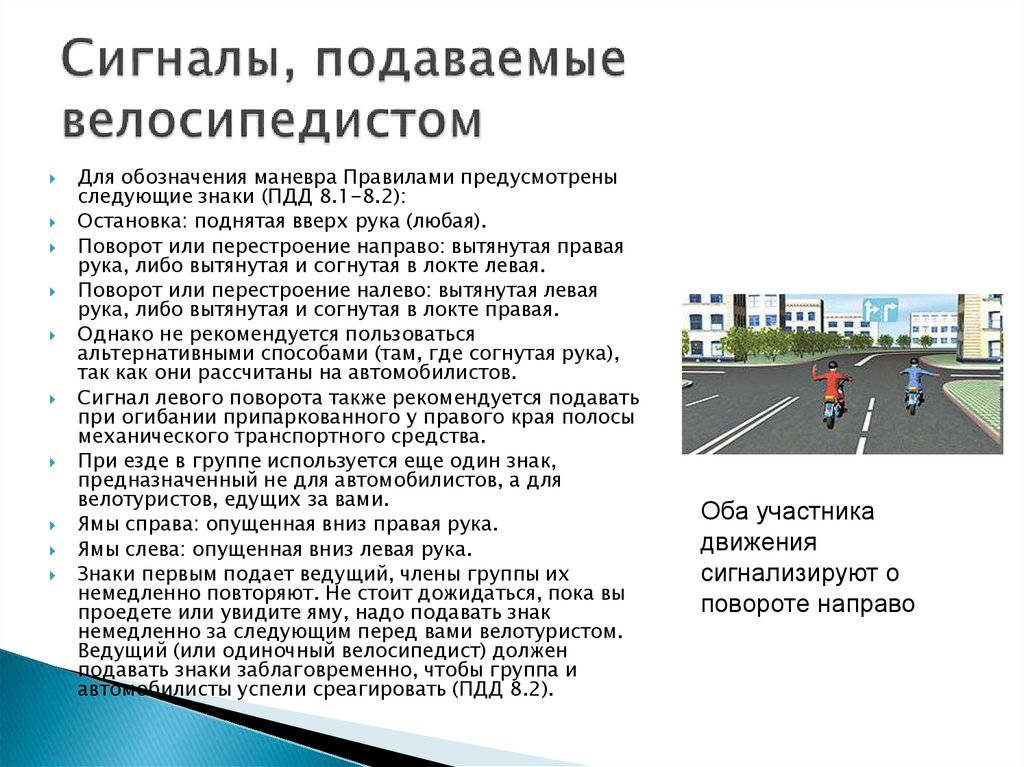 Модель поведения велосипедиста на дороге