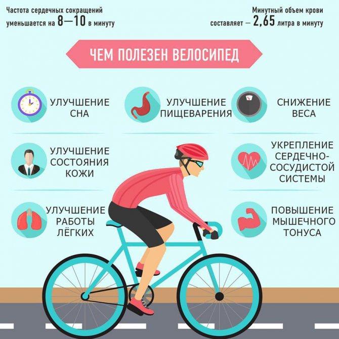 Катание на велосипеде: польза для здоровья от езды на нём