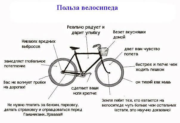 Нужно ли обслуживание современному велосипеду | сайт котовского
