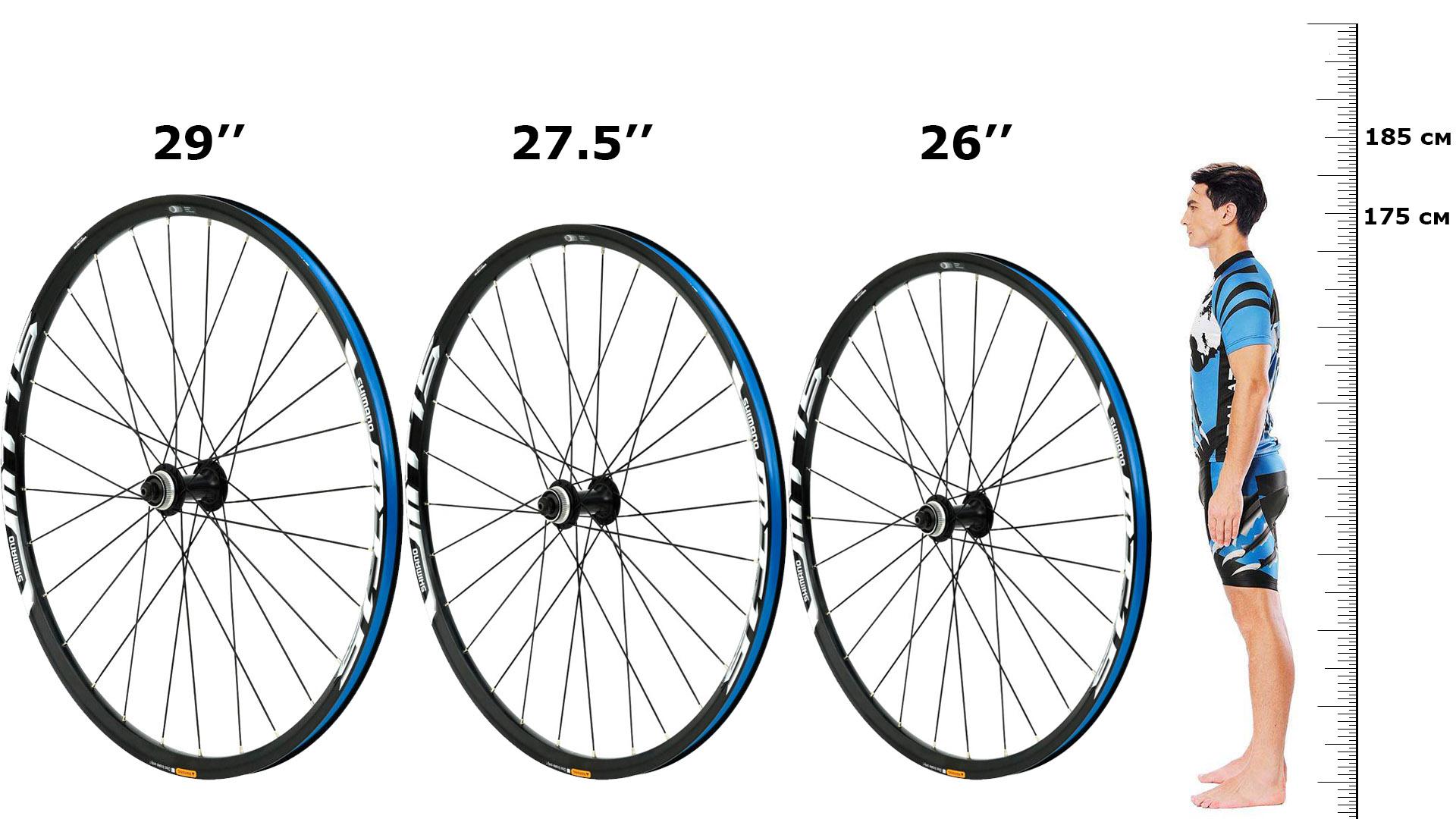 Особенности велосипедов с большими и широкими колесами, лучшие модели