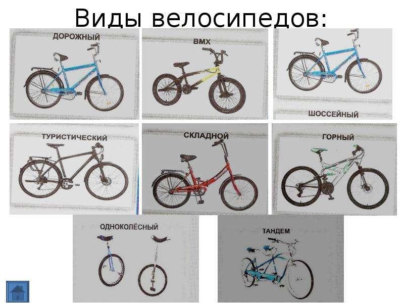 Чем отличаются велосипеды: горные и дорожные, мужские и женские