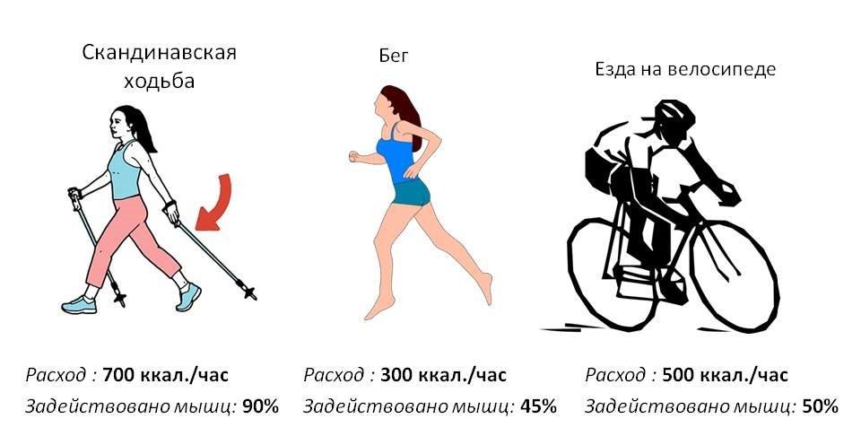 Сколько калорий сжигает езда на велосиепеде в течении 1 часа?