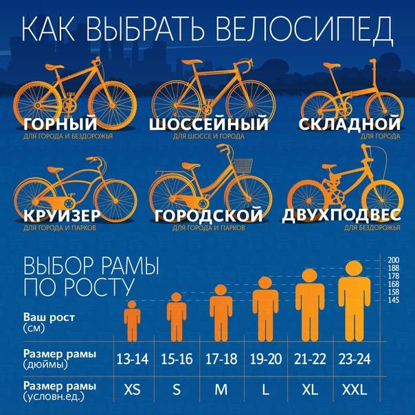 Как правильно выбрать велосипед для взрослого