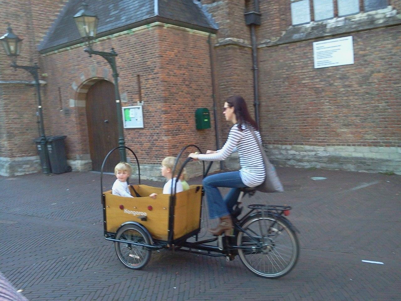 Велосипед с коляской взрослый:  популярные вопросы про беременность и ответы на них