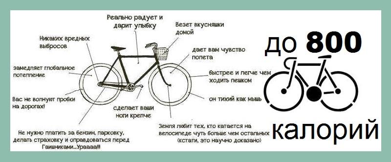Сколько калорий тратится при езде на велосипеде за 1 час