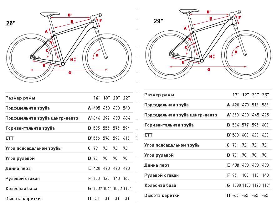 Как правильно подобрать размер рамы велосипеда по росту: инструкция