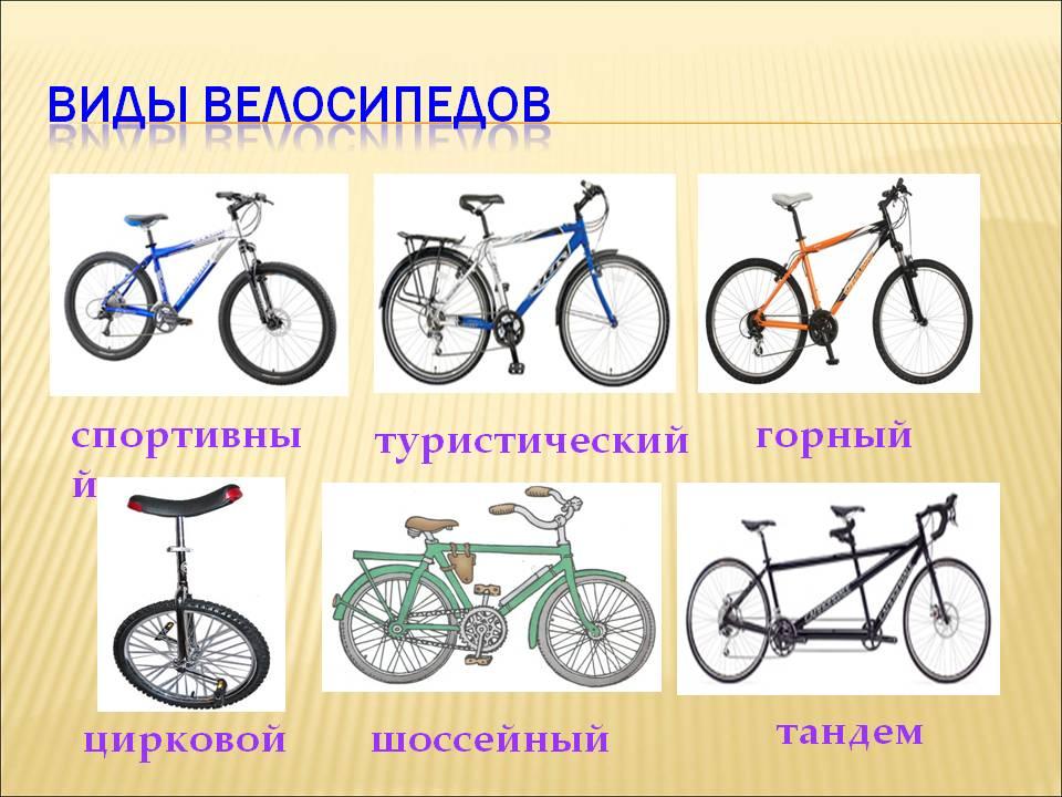 Типы и виды велосипедов, какие бывают велосипеды